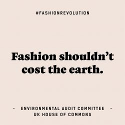 FashRev_infographic_cotton-costs