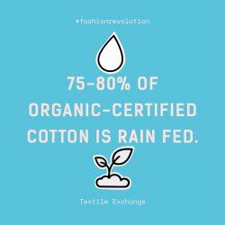 FashRev_infographics_cotton-organic